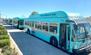VVTA-Bus-Lines